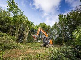 HItachi Travaux forestiers Mivois Schmitt TP abbatage