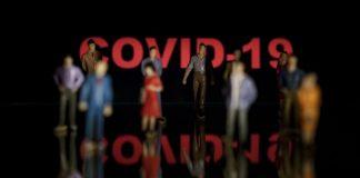 Coronavirus Covid 19 activité TP